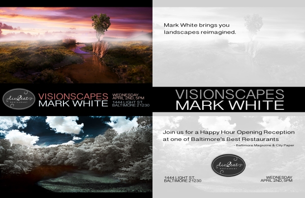 Mark White Visionscapes gallery exhibition flyer